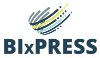 Finding Errors in Packages Easily with BI xPress